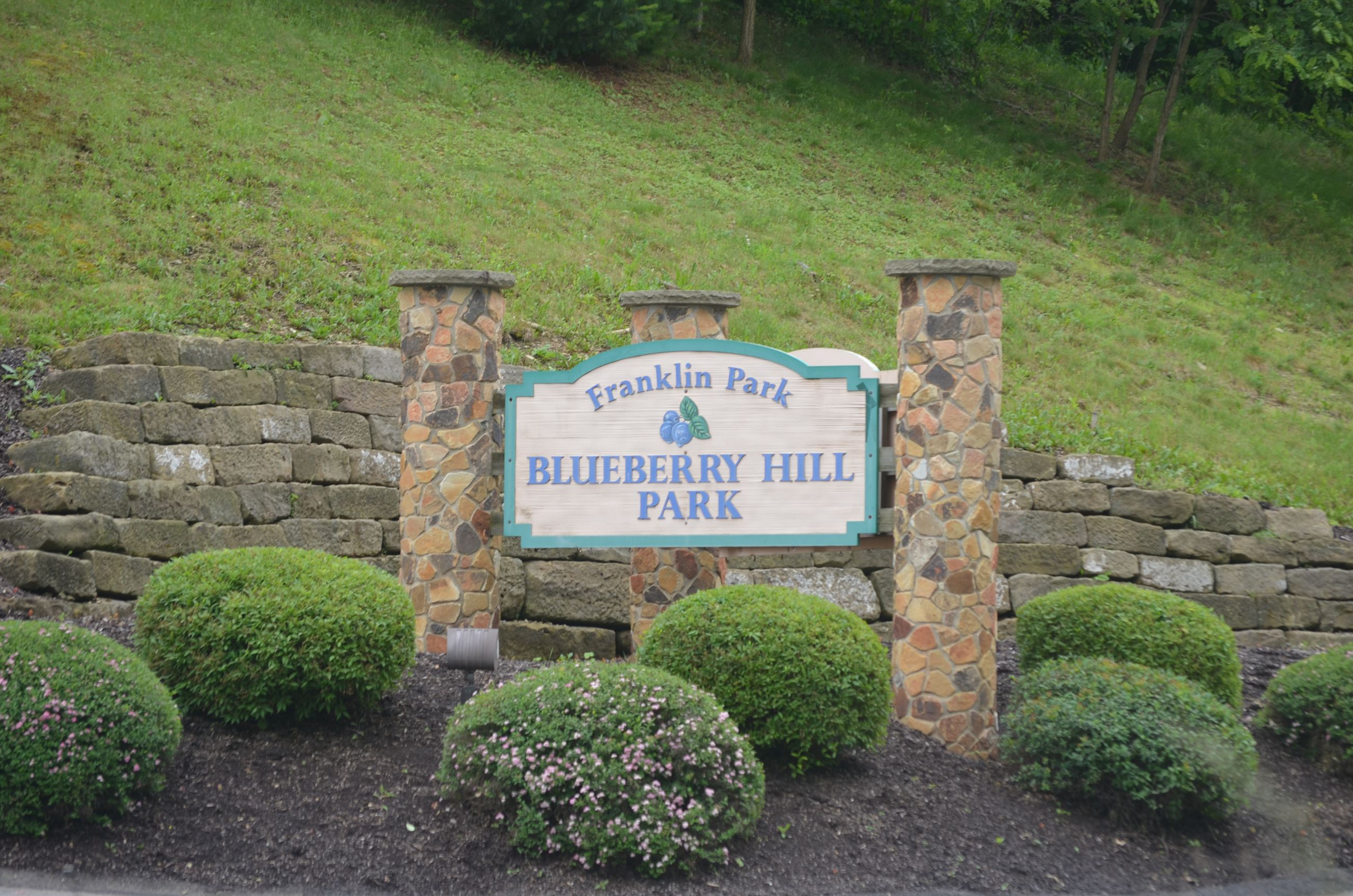 Blueberry Hill Park